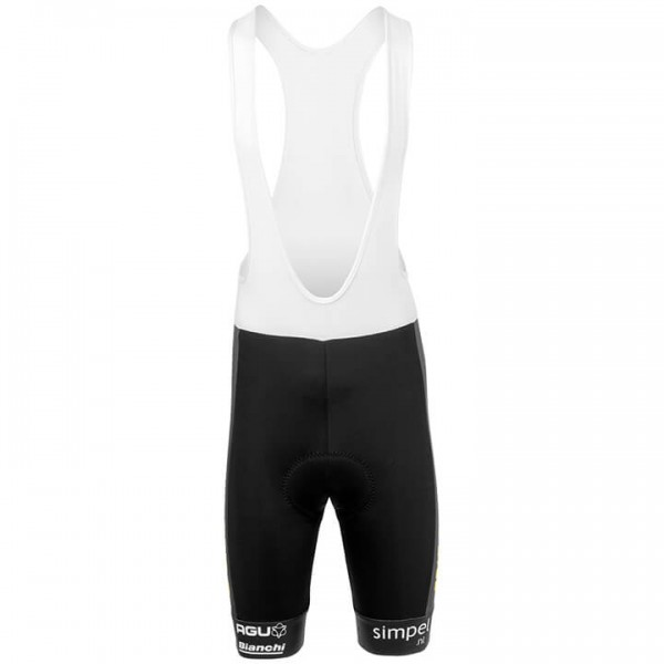 TEAM JUMBO-VISMA 2019 Bib Shorts black